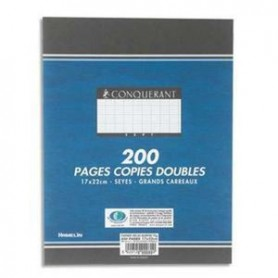 Copies Doubles Non Perforees 17x22 200p Seyes 70g