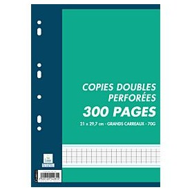 Copies Doubles Perforees 21x29.7 300p Seyes 70g