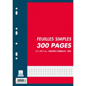 Feuillets Mobiles Perforees 21x29.7 300p Seyes 80g