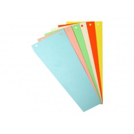 Exacompta Forever - 100 fiches intercalaires - 105 x 240 mm - couleurs assorties